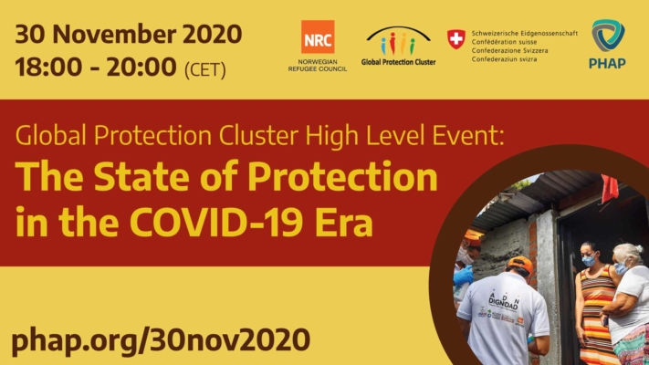 the-state-of-protection-in-the-covid-19-era-online-nov-2020